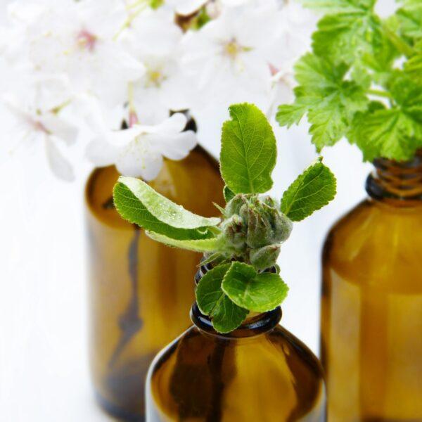 Aromas & Essential Oils
