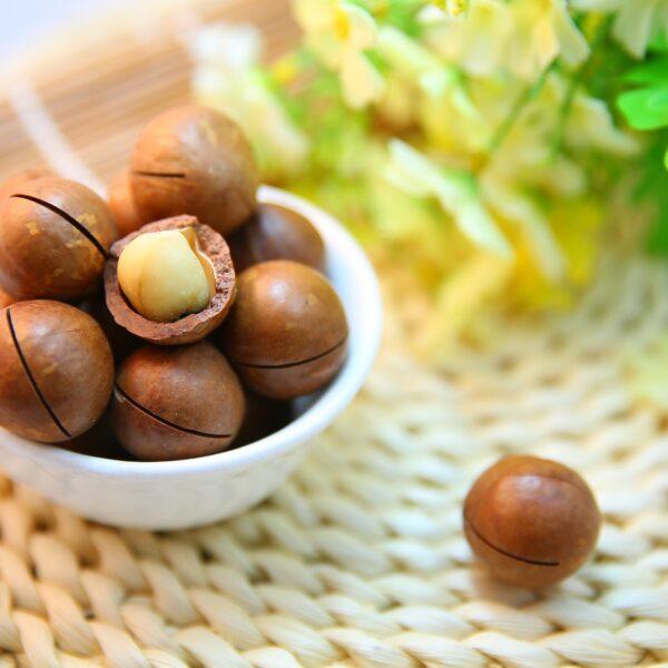 Macadamiaöl BIO